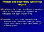 primary and secondary female sex organs
