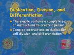 duplication division and differentiation