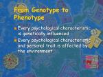 from genotype to phenotype