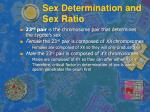 sex determination and sex ratio