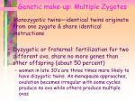 genetic make up multiple zygotes