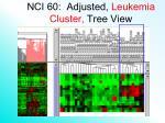 nci 60 adjusted leukemia cluster tree view