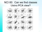 nci 60 can we find classes using pca view