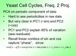yeast cell cycles freq 2 proj1