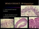 boala celiac morfopatologie