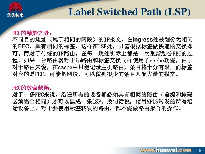 Label Switched Path (LSP)