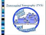 transvaginal sonography tvs1