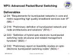 wp3 advanced packet burst switching