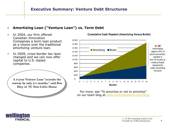 Executive Summary: Venture Debt Structures