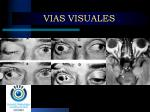 vias visuales4