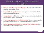 what makes t he timisha model replicable