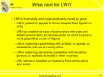 what next for lwi