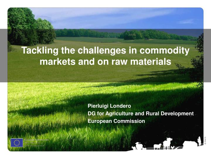 tackling the challenges in commodity markets and on raw materials n.