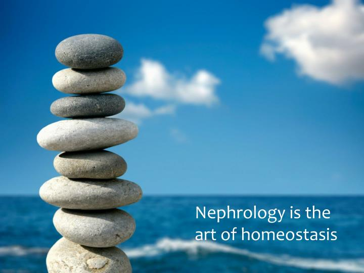 nephrology is the art of homeostasis n.