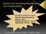 options for involving practitioners and stakeholders1