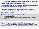 federalismo fiscal en la provincia del neuqu n