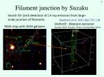 filament junction by suzaku