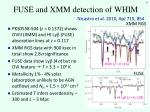 fuse and xmm detection of whim