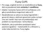 fuzzy clips3