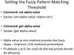setting the fuzzy pattern matching threshold