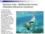 ugrozena vrsta mediteranska morska medvedica monachus monachus