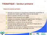 thematique secteur primaire11