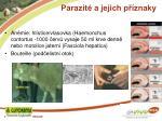 parazit a jejich p znaky