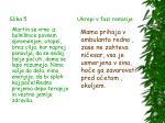 slika 5 ukrepi v fazi remisije