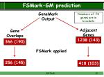 fsmark gm prediction