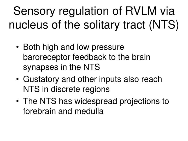 Sensory regulation of RVLM via nucleus of the solitary tract (NTS)