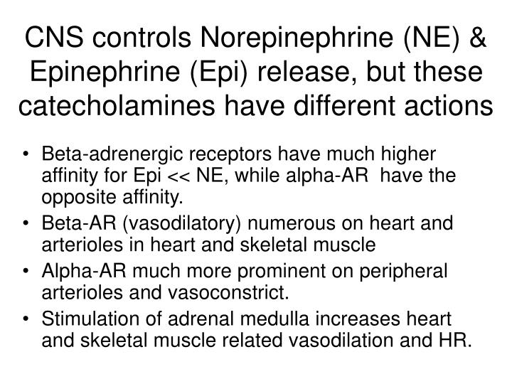 CNS controls Norepinephrine (NE) & Epinephrine (Epi) release, but these catecholamines have different actions