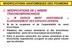 modifications anatomiques des poumons1