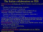 the italian collaboration on tes