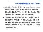 p ccpch