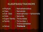 klasifikasi taxonomi1