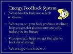 energy feedback system