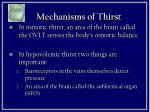 mechanisms of thirst