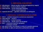 2 reflexul salivator