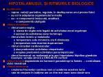 hipotalamusul i ritmurile biologice