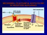 mecanismul ce ac iune al acetilcolinei pe receptorii muscarinici