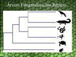 rvore filogen tica dos r pteis