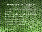 subordem sauria lagartos1
