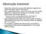 obstru o intestinal