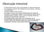 obstru o intestinal1