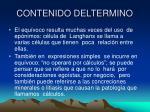 contenido deltermino1