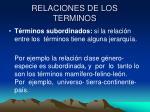 relaciones de los terminos1