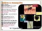 sobre o mosquito