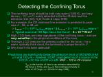 detecting the confining torus