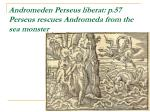 andromeden perseus liberat p 57 perseus rescues andromeda from the sea monster