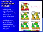 cloudiness in other ncep products